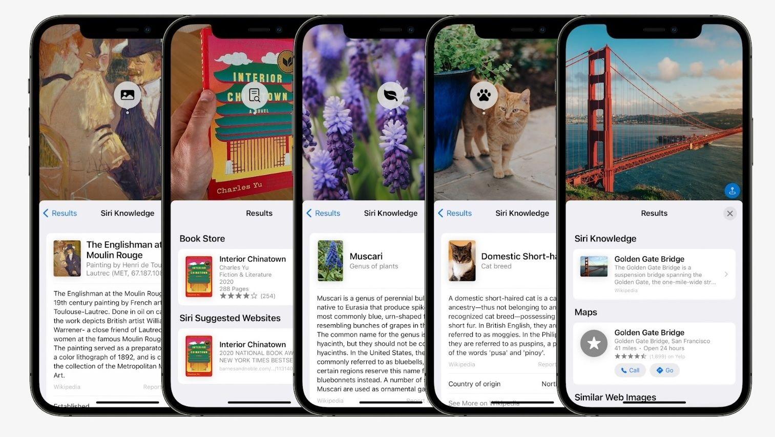 iOS 15 Live Text 02