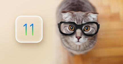 iOS_Kitten_2