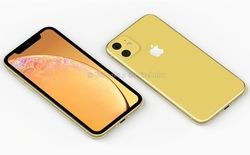 iPhone XR 2019 02