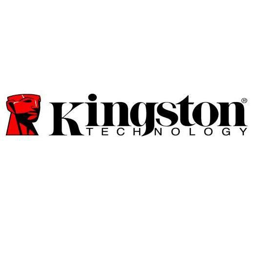 buzz-annonce com kingston