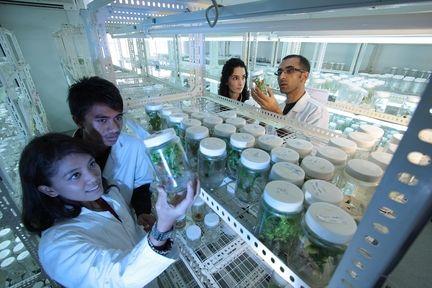 laboratoire-recherche-scientifique
