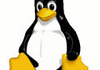 Linux : Kernel.org refait surface sur la Toile
