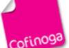 Partenariat Cofinoga et PayPal : les cyberacheteurs visés