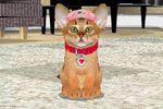 Love Cat Life 5