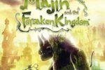 Majin and the Forsaken Kingdom - jaquette PS3