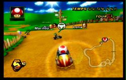 Mario Kart Wii (52)