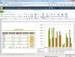 Microsoft Excel 2010 screen 2