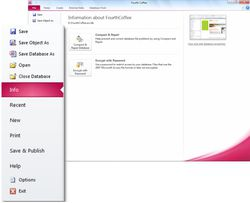 Microsoft Office_Access_2010 screen