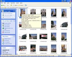 Microsoft RAW Image Thumbnailer and Viewer screen