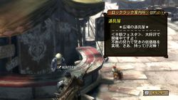 Monster Hunter 3 - 11