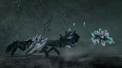 Monster Hunter Frontier Online - 13