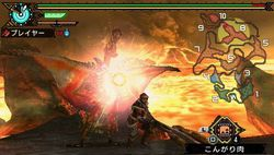 Monster Hunter Portable 3rd - 1