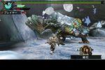 Monster Hunter Portable 3rd - 4