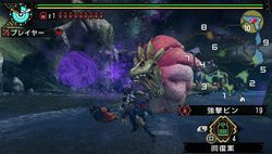 Monster Hunter Portable 3rd - 8