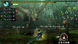 Monster Hunter Portable 3rd HD (3)