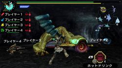 Monster Hunter Portable 3rd HD (5)