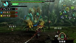 Monster Hunter Portable 3rd HD (6)