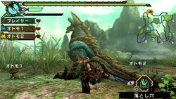 Monster Hunter Portable 3rd HD (9)