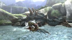 Monster Hunter Tri - 10