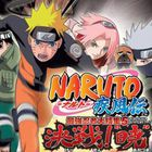 Naruto DS : vidéo