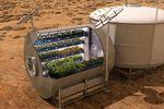 NASA Veggie nourriture mars.