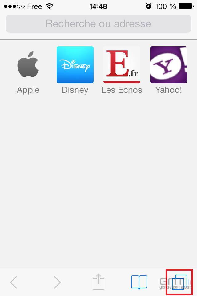 Navigation privée Safari iOS (1)