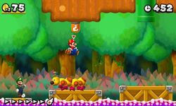 New Super Mario Bros 2 (4)