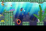 New Super Mario Bros Wii (11)