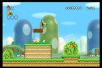 New Super Mario Bros Wii (18)