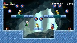 New Super Mario Bros Wii (5)
