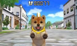 Nintendogs + cats (4)