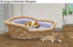 Nintendogs + cats (6)