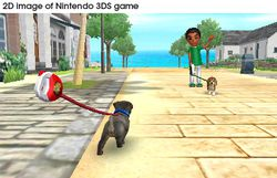 Nintendogs + cats (7)