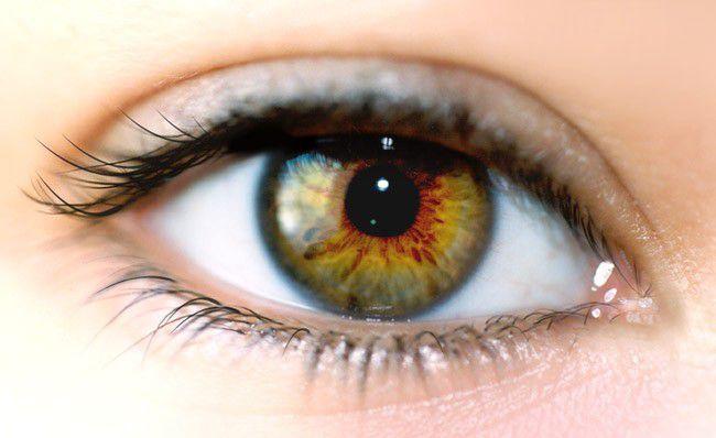 Science : un homme recouvre la vue grâce à une cornée artificielle