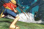 One Piece Pirate Musou - 1