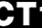 perfect10.com-logo