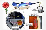 prothèse oeil rétine