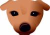 Puppy Linux devient compatible Slackware