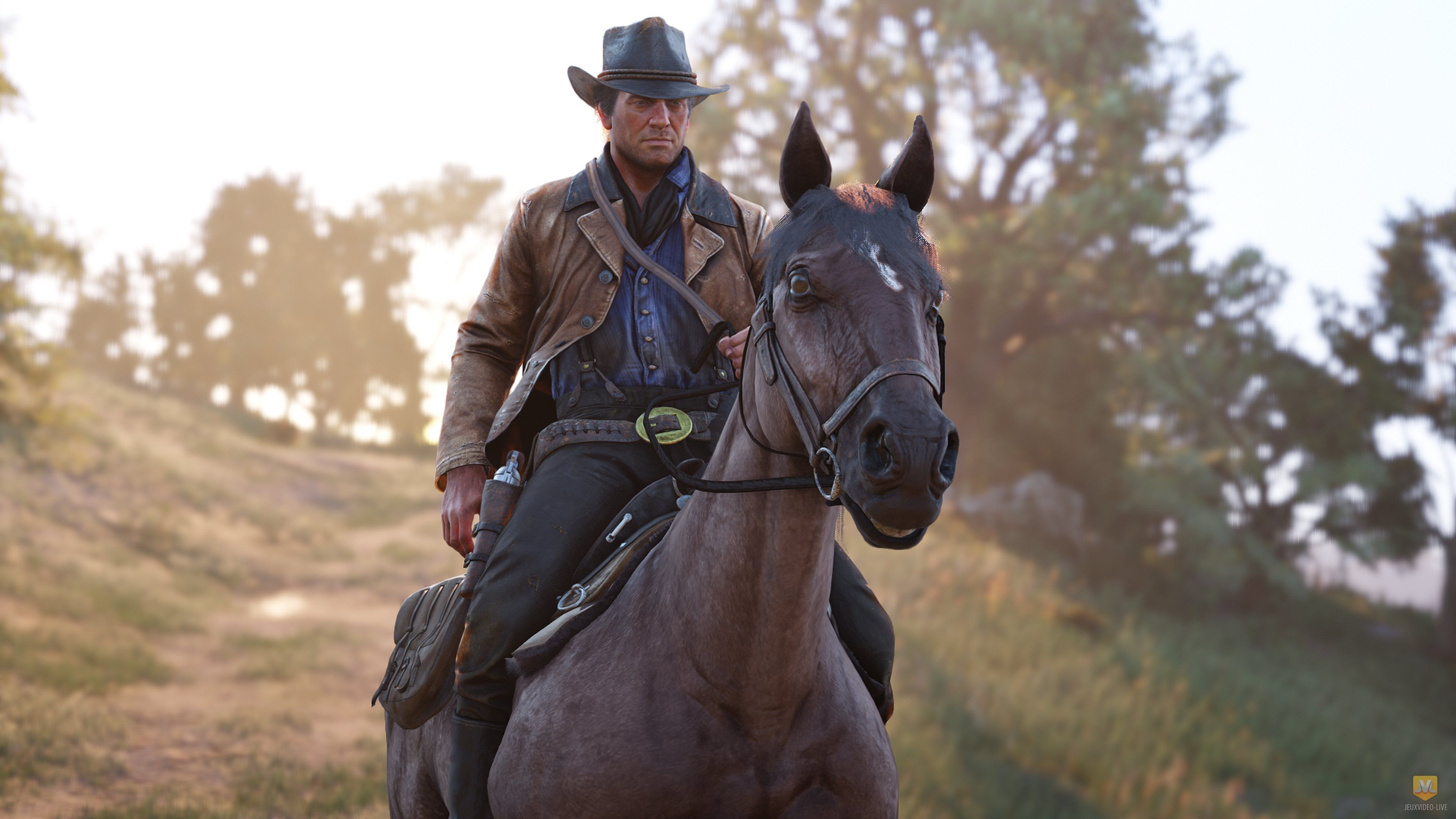 Red Dead Redemption 2 : la version PC s'affiche dans le listing d'un revendeur avec date de sortie