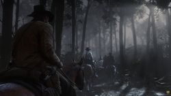 Red Dead Redemption 2_07