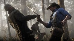 Red Dead Redemption 2_16