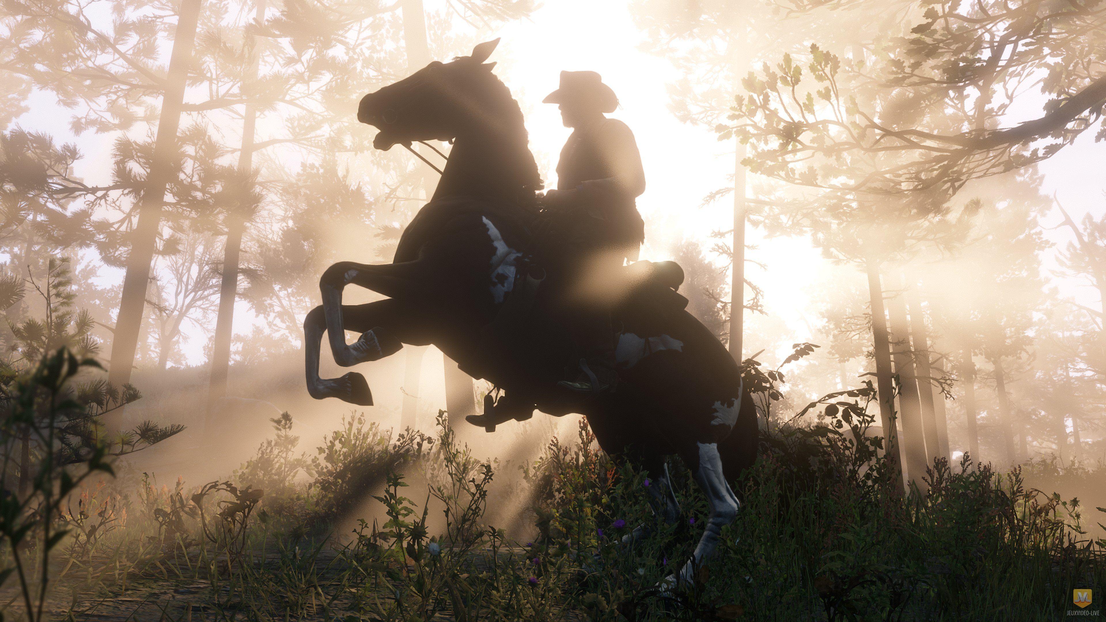 Red Dead Redemption Online : Rockstar partage quelques détails