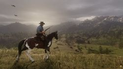 Red Dead Redemption 2_23