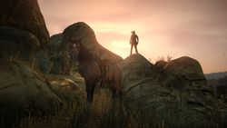 Red Dead Redemption - Image 37