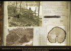 Secret Files: Tunguska image 24