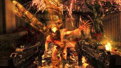 Shadow Warrior - 2