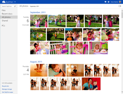 SkyDrive-photos-timeline-1