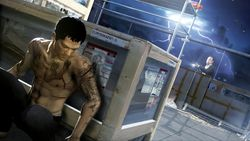 Sleeping Dogs - 10