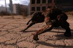 STALKER Call of Pripyat - Image 15