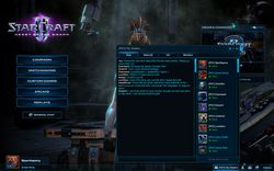 StarCraft II : Heart of the Swarm - clans 2